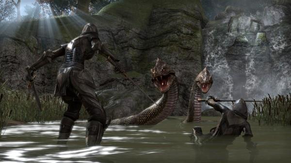 the elder scrolls online_fight_pool