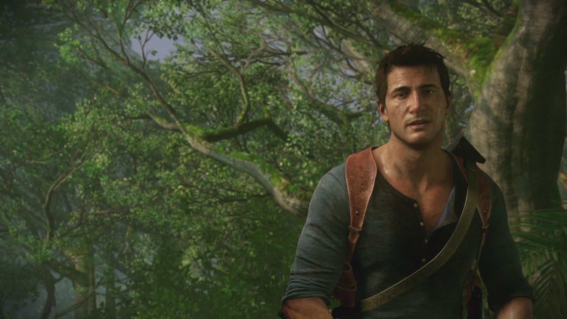 Uncharted4-Drake-Forest