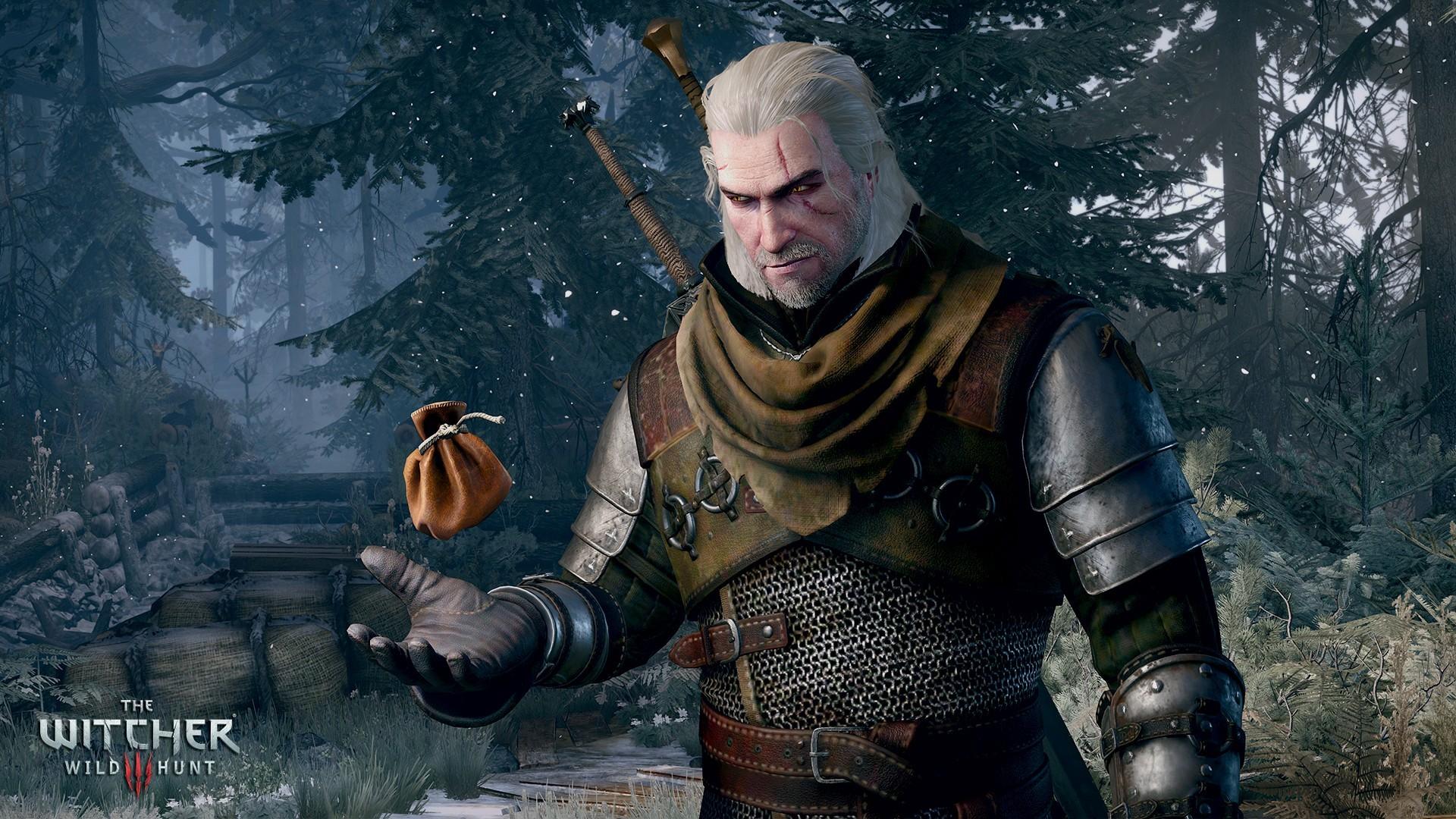 Geralt-Sack-Coin